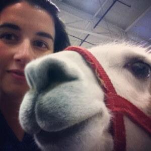 Dr. Heather DiGiacomo with a llama