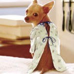 dog-gown