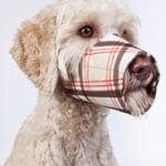 soft-muzzle