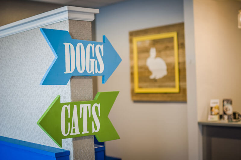Practice Tour - Newtown Square Veterinary Hospital